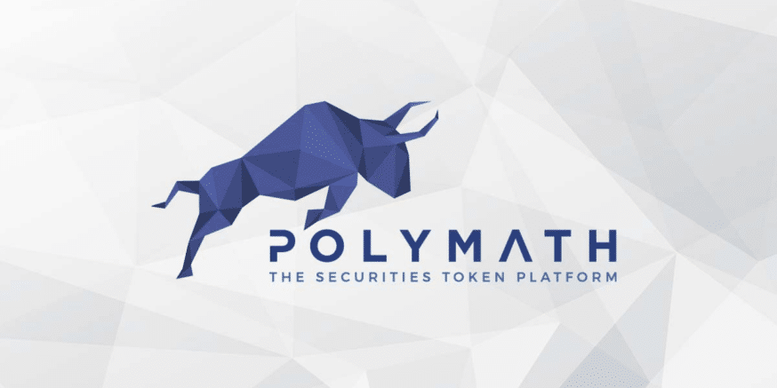 What is Polymath? Beginner's Guide