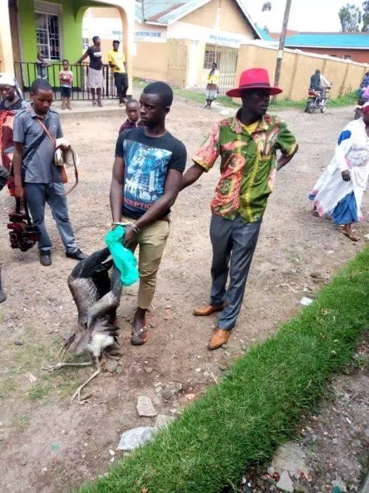Man Arrested By Police for Catching Bird Linked to Witchcraft (Photos)