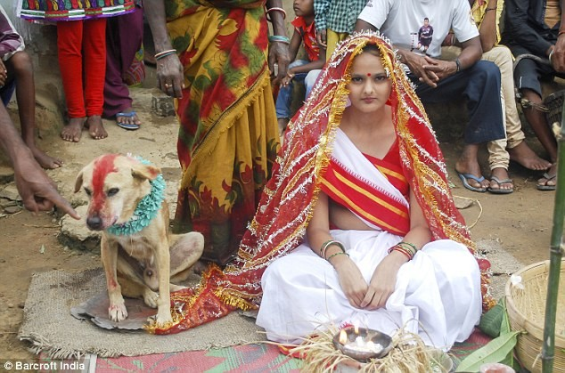 18-Year-Old Indian Girl Marries A Dog, You'll be Shocked at the Reason!