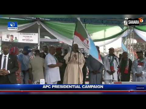 President Buhari Makes Serious Plunder During APC Presidential Campaign in Edo State (Video)