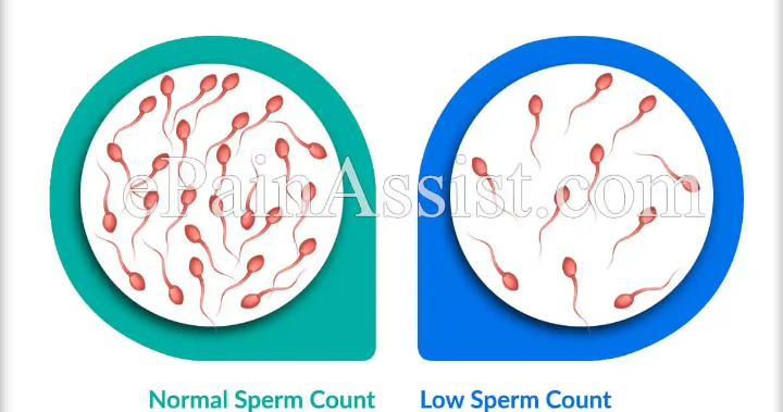 Men, these are the three food items that kill the sperm