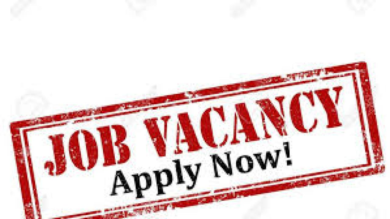 Urgent Vacancy – Finance Manager Needed for Immediate Employment