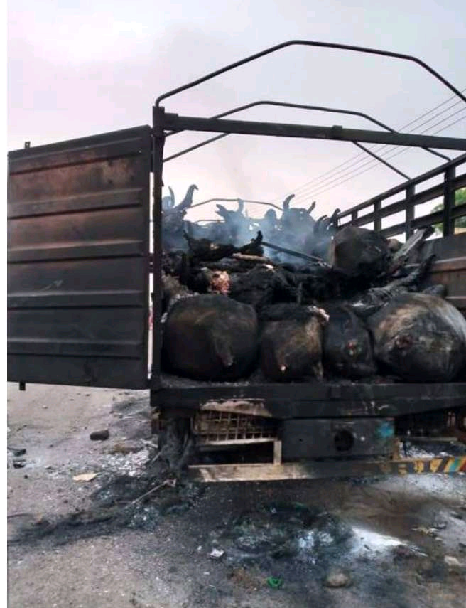 How Angry Youths Burn Down A Trailer Full of Cow Over The Killing of A Boy in Oyo State